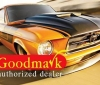 Goodmark 840314120403 Dash Panels best price